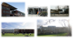 International Schools in The Hague © Utexpat/expatsincebirth